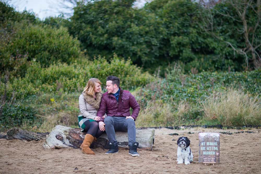 engagement photography dalgety bay - young couple sitting on log with their dog